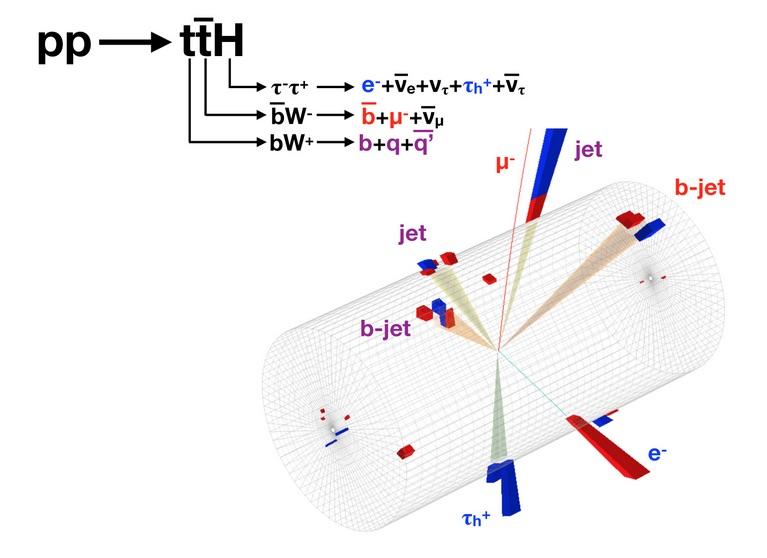 Un événement candidat de production d'une paire quark top anti-quark top, en conjonction avec un boson de Higgs, dans l'expérience CMS. Le Higgs se désintègre en un lepton tau+, qui se désintègre à son tour en hadrons et un tau-, qui se désintègre en un électron. Les symboles du produit de désintégration figurent en bleu. La désintégration du quark top en trois jets de particules plus légères, est indiquée en violet. L'un des jets est initié par un quark b. L'anti-quark top se désintègre en un muon et un jet-b, qui apparaissent en rouge. (Image : CMS/CERN)