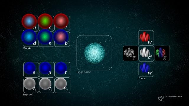 Les particules élémentaires. © CERN