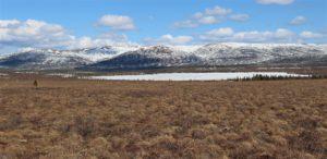 Paysage du Eightmile Lake après le dégel