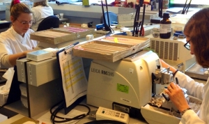Dans les labos de l'IPG a Gosselies