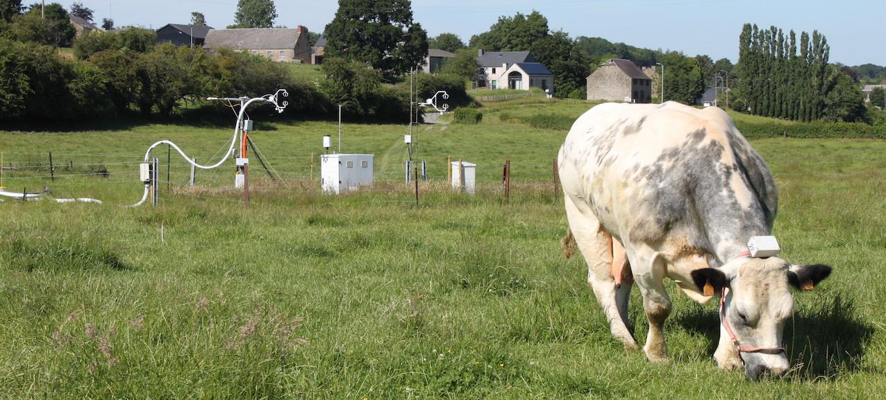 Quatre stations de mesure des flux de gaz à effet de serre sont situées en Wallonie. Seule celle de Dorinne ne fait pas encore partie du réseau européen ICOS.