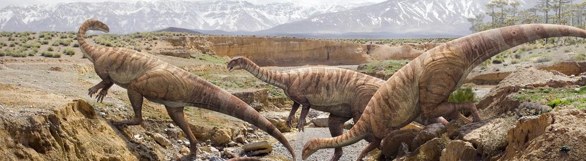 Platéosaures.