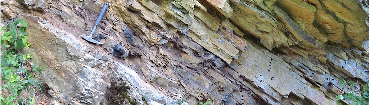 L'évènement d'extinction du Dévonien est marqué par des niveaux de schistes noirs (indiqués par le marteau de géologue) qui interrompent la succession continue de calcaires marins, dans le gisement de Steinbruch Schmidt (Bad Wildungen), en Allemagne.