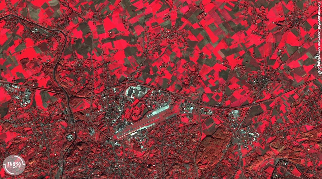 La végétation dans la région de Gosselies, observée en infrarouge par Sentinel-2, en novembre 2018. Source: terrascope.be