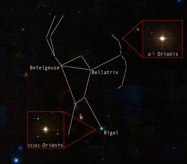 La constellation d'Orion est bien visible sous nos latitudes en hiver. La température à la surface des étoiles peut aisément être déterminée par leur couleur. Betelgeuse (3.600 degrés) apparait rouge et Bellatrix (21.000 degrés) bleue. En revanche, mesurer la température à l'intérieur des étoiles constitue un véritable défi. La constellation d'Orion contient justement deux étoiles géantes rouges étudiées par les astronomes de l'ULB. L'une, V1261 Orionis, a permis d'estimer la température de la fabrication des éléments plus lourds que le fer au cœur des étoiles (environ 100 millions de degrés). L'autre, o1 Orionis, produit ces éléments lourds depuis 1.3 million d'années.