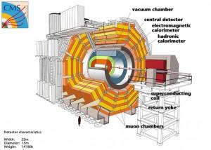 Schéma de l'expérience CMS. © CERN