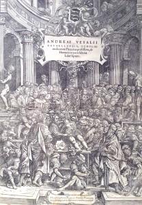 Frontispice et portait (en tête d'article), d'André Vésale dans «De humani corporis fabrica» de 1543, attribués à Jan Stephan Van Calcar (1499-1548). (Cliquez pour agrandir)
