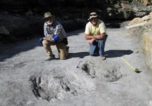 Le Pr Martin Lockley (à droite) et un de ses collègues, à côté de deux grandes traces grattées dans le sol, probablement par des théropodes, lors d'un parade nuptiale. Ces traces, datant du Crétacé, on été retrouvées au Colorado. © Martin Lockley