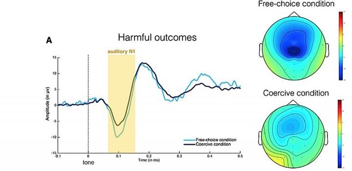 Une action réalisée suite à un ordre modifie la réponse neurale.