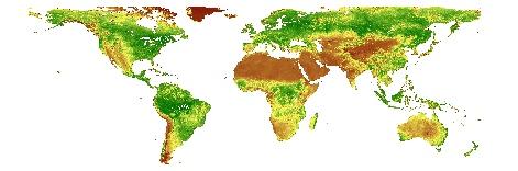 Synthèse Spot-Vegetation.