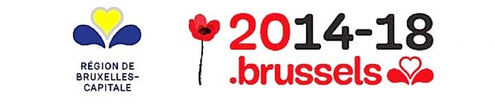 brussels studies premiere guerre mondiale