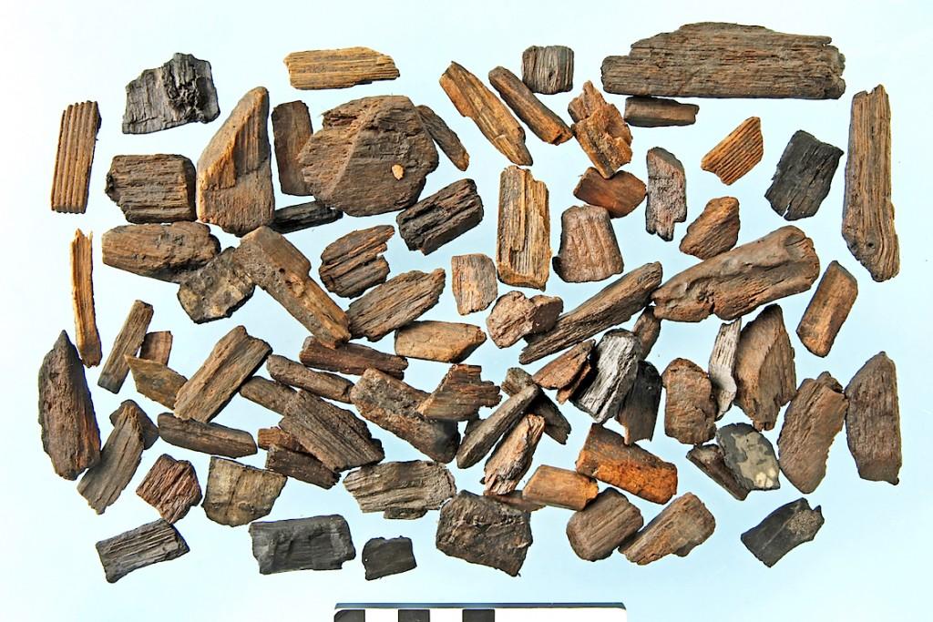 Quelques fragments de bois étudiés par l'archéobotaniste.  © Koen Deforce, IRSNB
