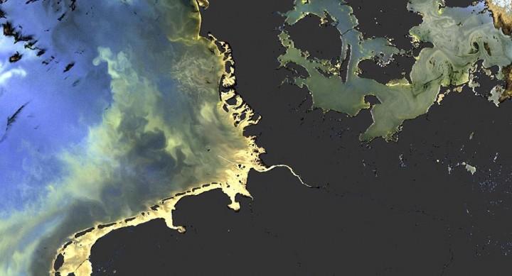 De chaque côté du Danemark, les nuances de couleurs de la Mer du Nord et de la Baltique dues au plancton sont observées par Sentinel-3A.© Eumetsat